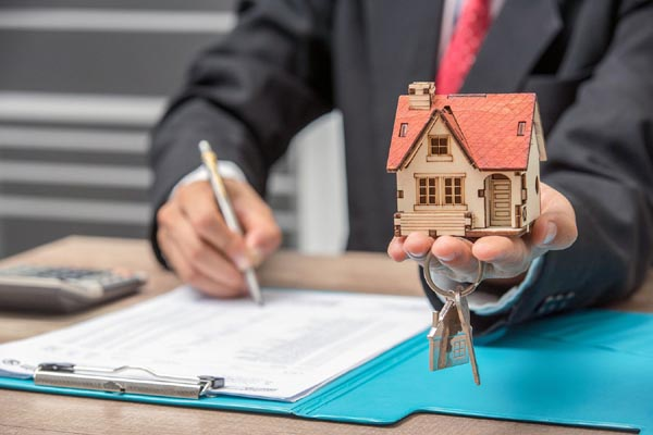 What Is a Bird Dog For Real Estate
